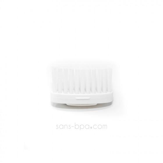 Brosse à dents française en bois - La maline
